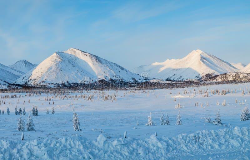 piękny sceniczny krajobraz z śniegiem zakrywał góry i jedlinowych drzewa, kolyma autostrada, zdjęcia stock
