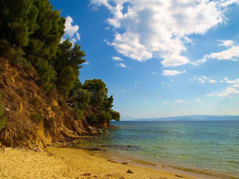 Piękny seascape z skalistą linią brzegową i sosny przy morzem egejskim blisko Koukounaries Wyrzucać na brzeg w Skiathos, Grecja obrazy royalty free