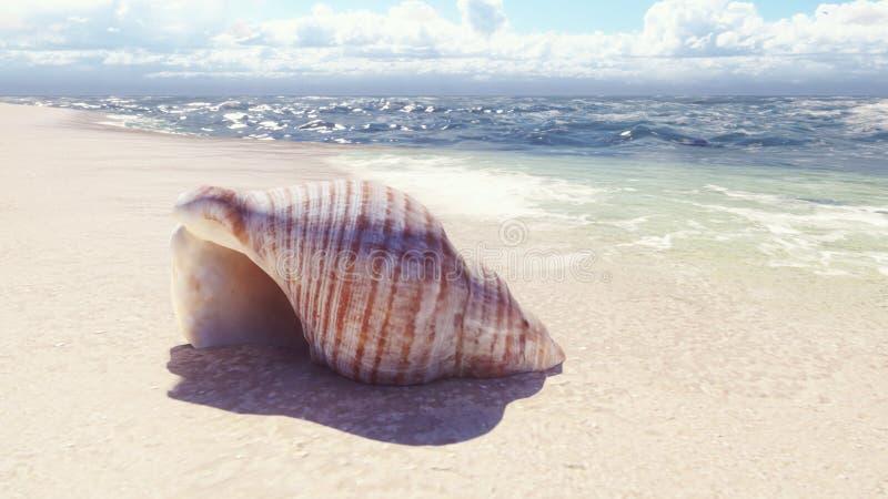 Piękny seashell na piaskowatej plaży, myjącej ocean falą ?wiadczenia 3 d royalty ilustracja