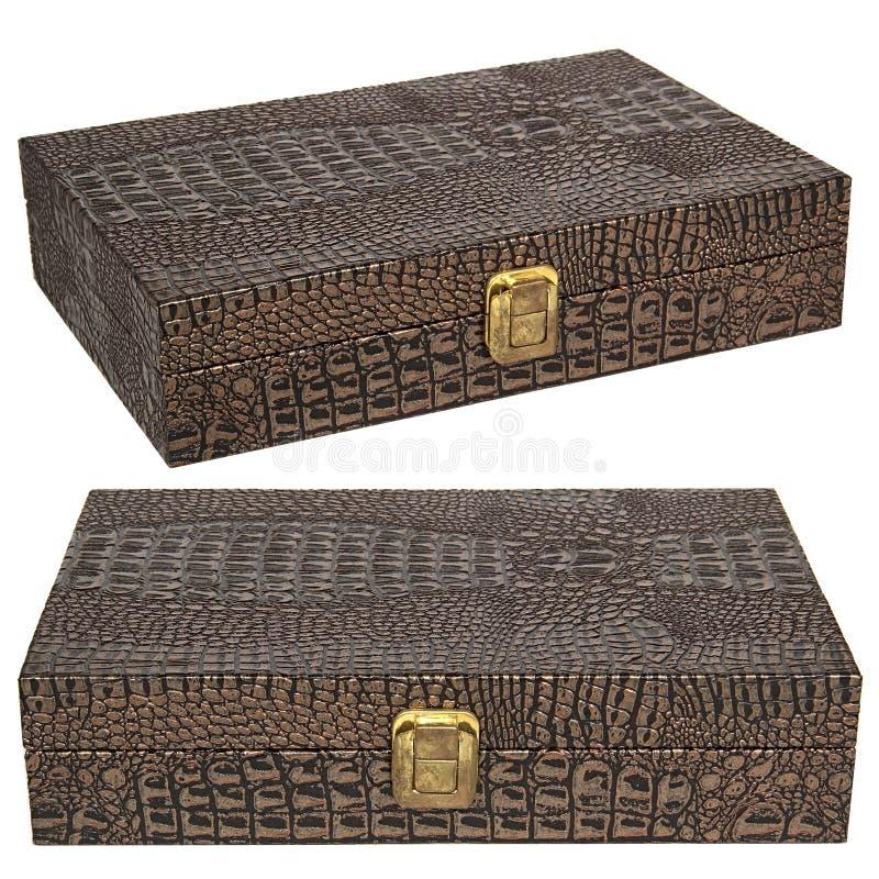 Piękny skóry pudełko obraz stock
