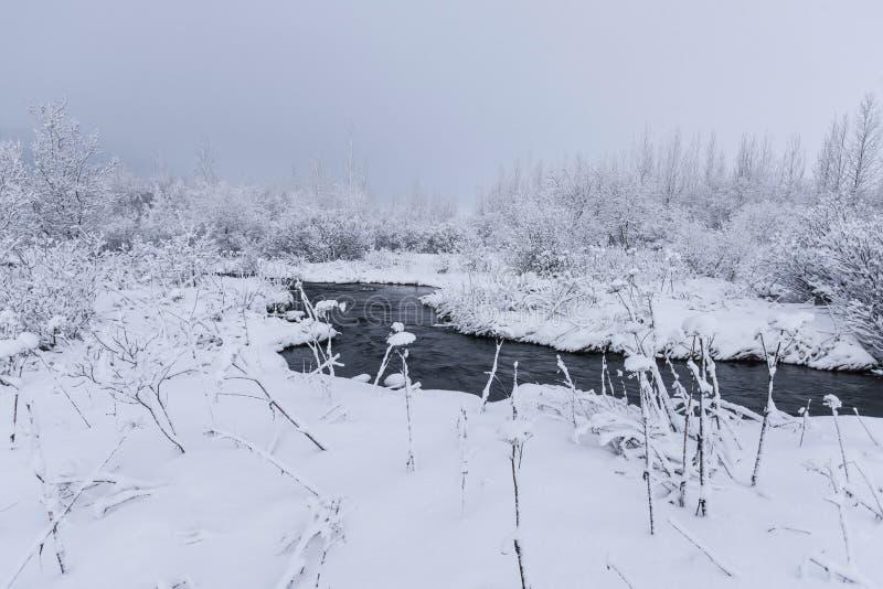Piękny snowsacpe obrazy stock