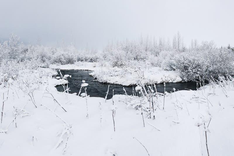 Piękny snowsacpe z małym strumieniem zdjęcie stock