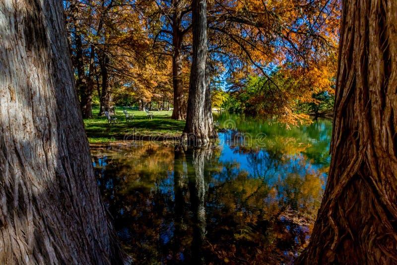 Piękny spadku ulistnienie Odbijający na Guadalupe rzece, Teksas obrazy stock
