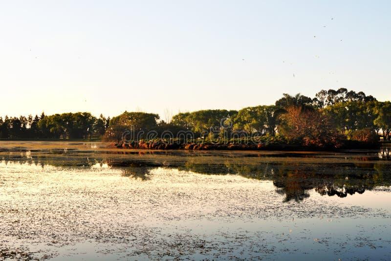 Piękny spokojny jezioro zdjęcia stock