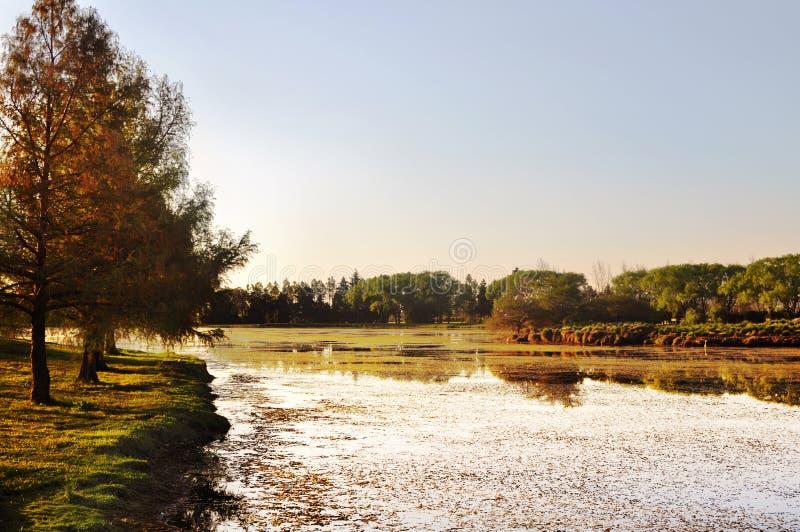 Piękny spokojny jezioro przy zmierzchem obraz stock