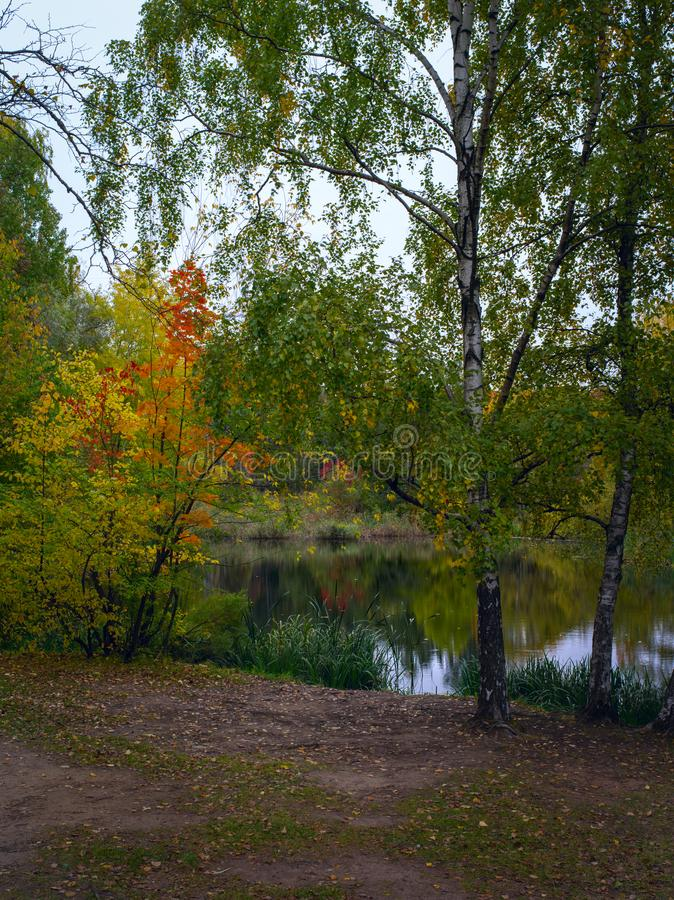 Piękny staw w głównym ogrodzie botanicznym Moskwy obrazy royalty free
