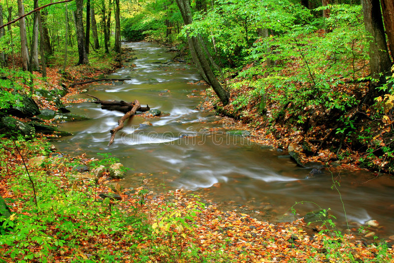 piękny strumień zdjęcia stock
