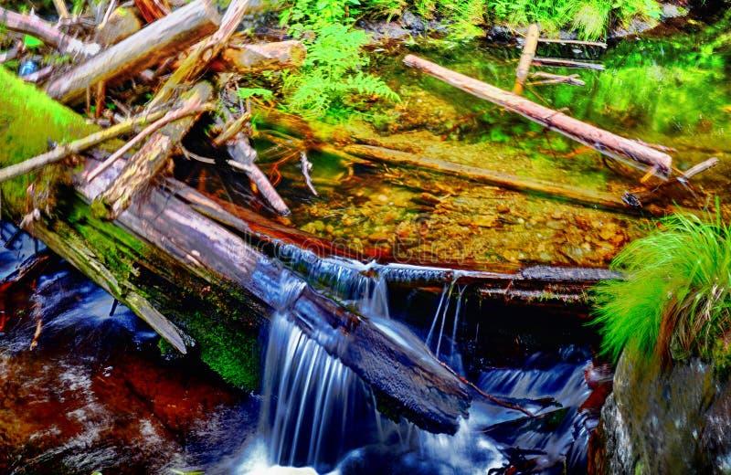 Piękny strumyk z siklawą przy wiosny światłem dziennym obrazy stock