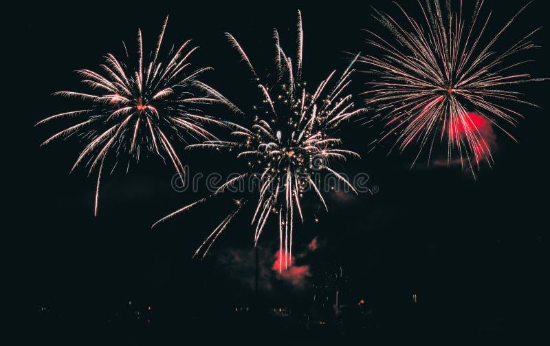 Piękny strzał fajerwerku pokaz w nocnym niebie fotografia royalty free
