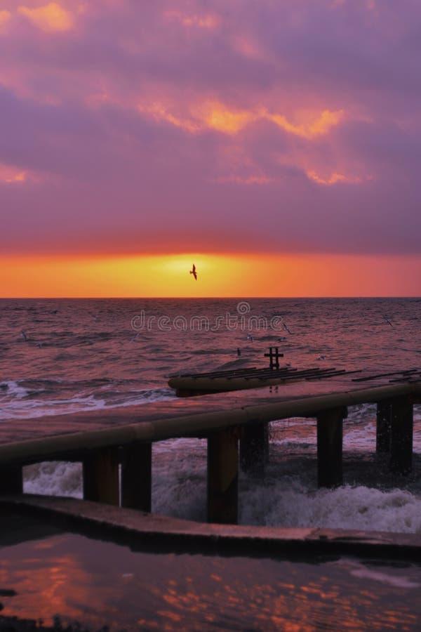 Piękny strzał molo z światła słonecznego jaśnieniem na horyzoncie przy zmierzchem z ptasim lataniem zdjęcie royalty free