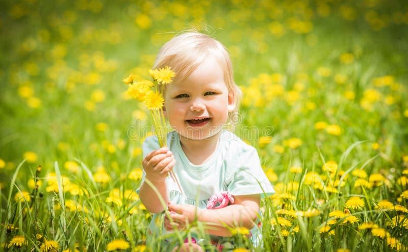 Piękny szczęśliwy mały dziewczynki obsiadanie na zielonej łące z kolorem żółtym kwitnie dandelions obrazy stock