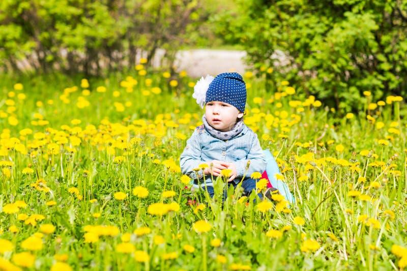 Piękny szczęśliwy mały dziewczynki obsiadanie na zielonej łące z kolorem żółtym kwitnie dandelions na naturze w parku obrazy royalty free