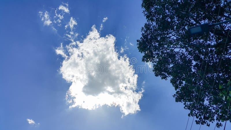 Piękny tło, wyraźnie widoczne linie białe chmury, niebieskie niebo, i obrazy stock