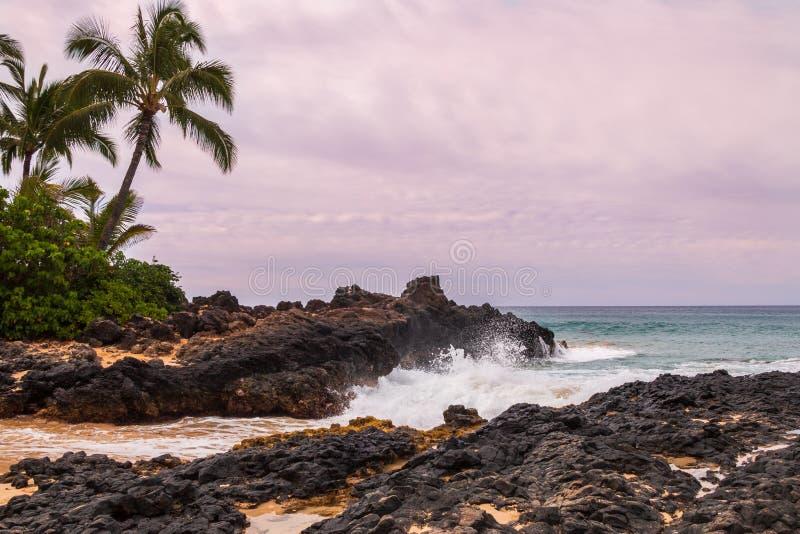Piękny Tajny zatoczka krajobraz Maui Hawaje obrazy royalty free