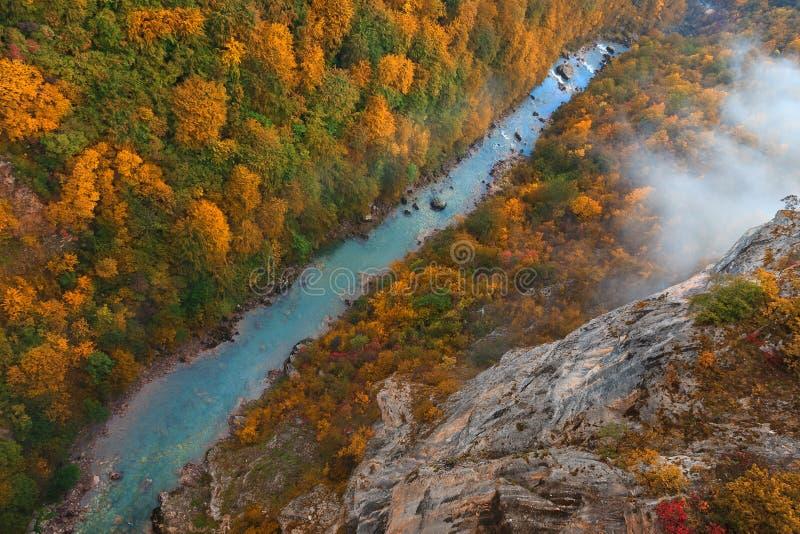 Piękny Tara rzeczny wąwóz od above w jesieni obraz royalty free