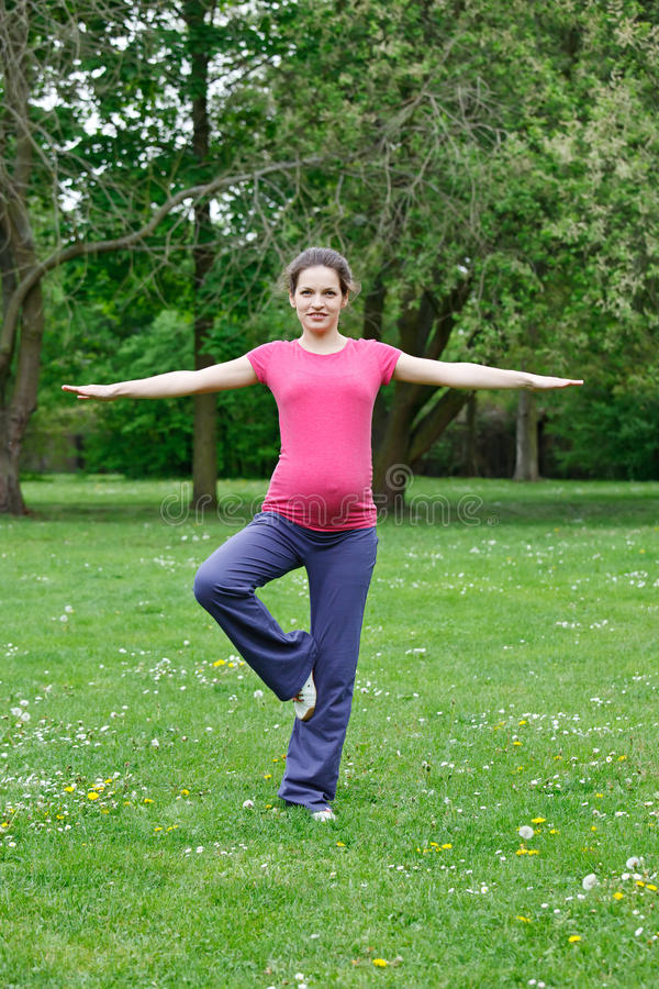 piękny target1639_0_ kobieta w ciąży fotografia stock