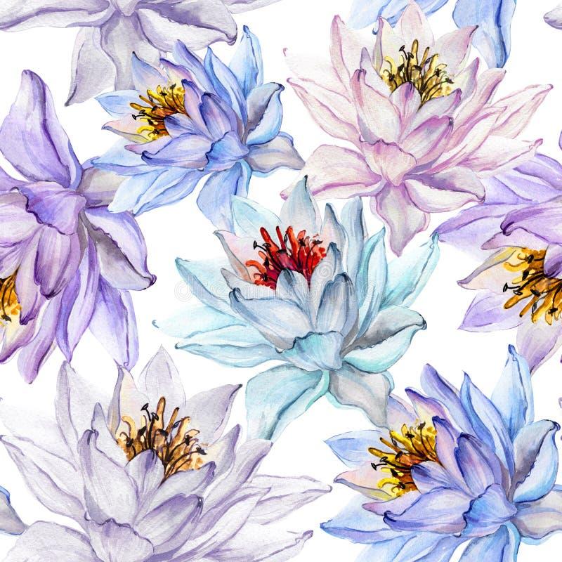 Piękny tropikalny kwiecisty bezszwowy wzór Wielcy lotosowi kwiaty w pastelowych cieniach na białym tle szczotkarski węgiel drzewn ilustracji