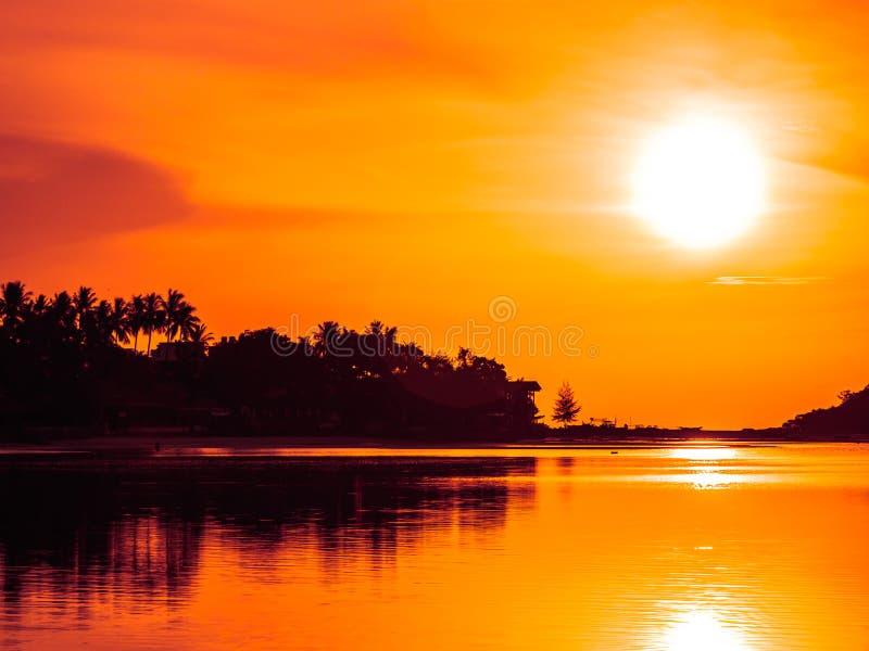 Piękny tropikalny plażowy morze i ocean z kokosowym drzewkiem palmowym przy wschodu słońca czasem fotografia royalty free