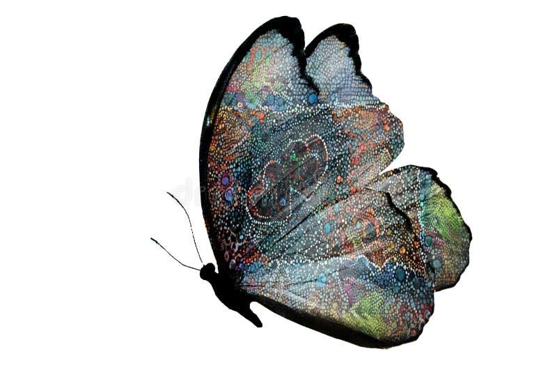 Piękny tropikalny stubarwny motyl odizolowywający na białym tle zdjęcia stock