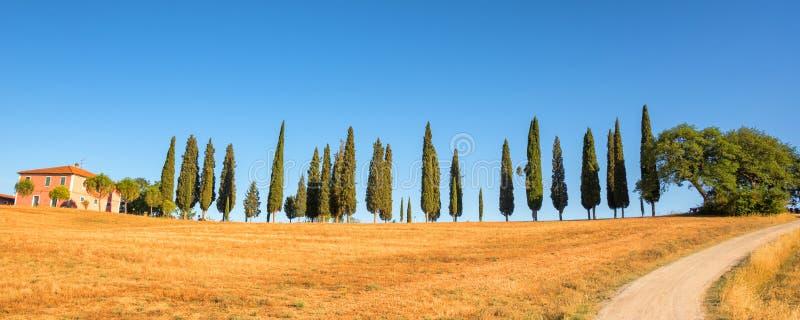 Piękny typowy panorama krajobraz Val d ` Orcia w Tuscany przy zmierzchem Włochy obraz stock