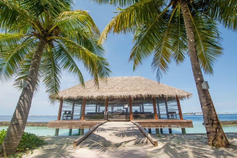 Piękny wibrujący tropikalny lato krajobrazu widok z restauracją i drzewka palmowe zbliżamy ocean obraz stock