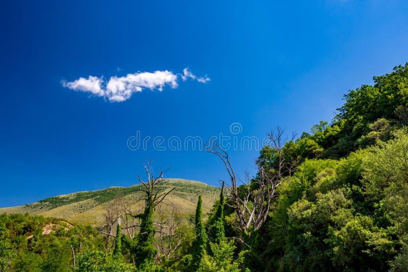 Piękny widok blisko niebieskie oko wiosny, Albania obrazy stock