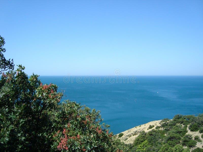 Piękny widok czarny morze na słonecznym dniu obrazy stock