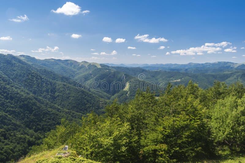 Piękny widok górski od Troyan terenu Troyan Bałkański jest wyjątkowo malowniczy i oferuje kombinację cudowny zdjęcie stock