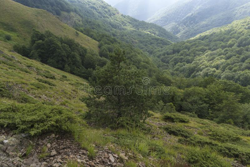 Piękny widok górski od wzgórzy na ścieżce Eho buda Troyan Bałkański jest wyjątkowo malowniczy i oferuje a obrazy royalty free