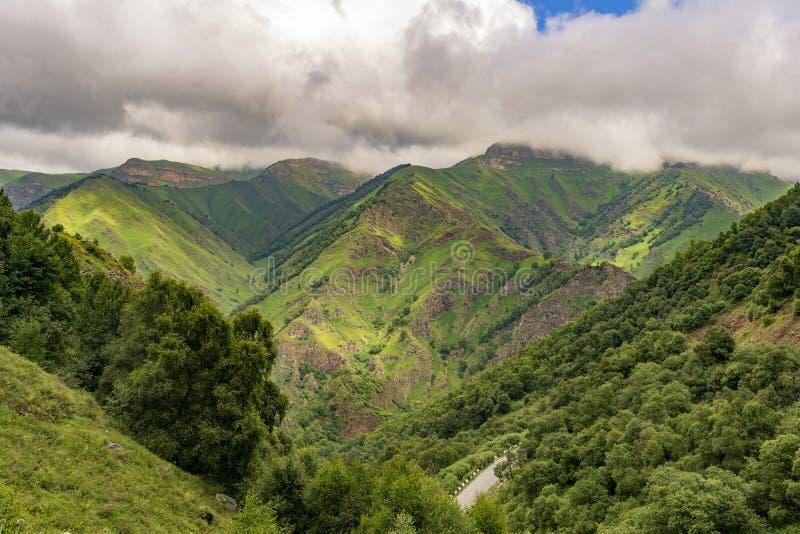 Piękny widok idylliczna wysokogórska halna sceneria z kwitnącymi łąkami i górami na pięknym dniu z niebieskim niebem i chmurami obraz royalty free