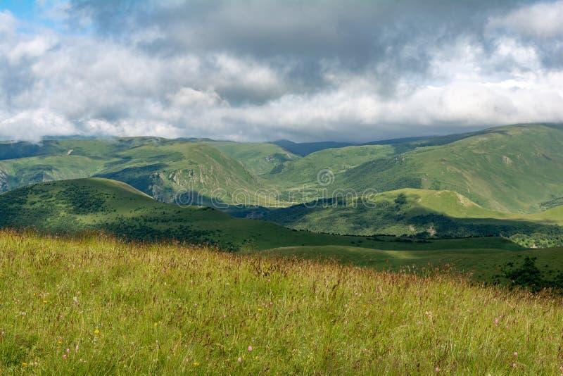 Piękny widok idylliczna wysokogórska halna sceneria z kwitnącymi łąkami i górami na pięknym słonecznym dniu z niebieskim niebem i fotografia stock