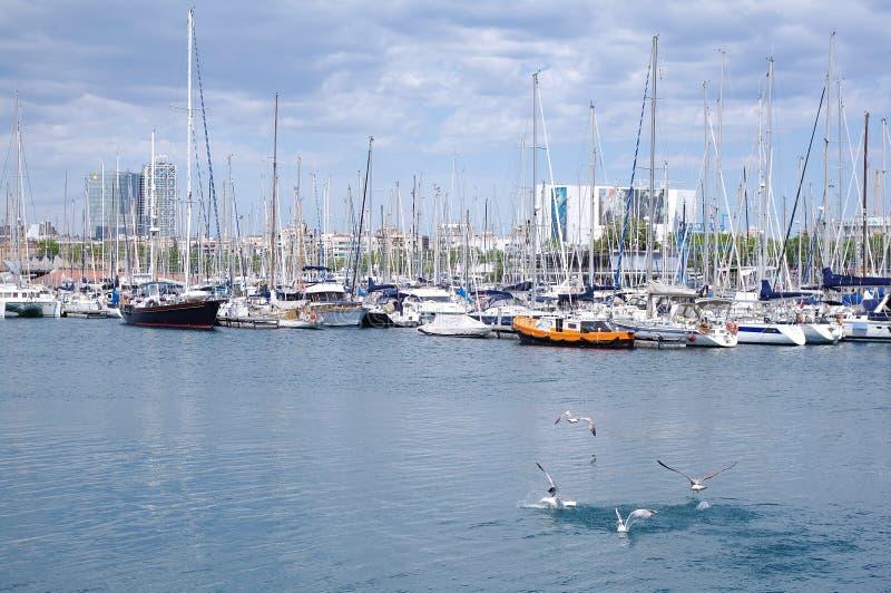 Piękny widok jachty parkuje w schronieniu, Barselona, Hiszpania fotografia royalty free