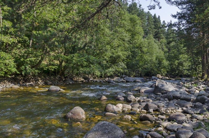 Piękny widok jesienny las Iskar w Rila górze i rzeka zdjęcia royalty free