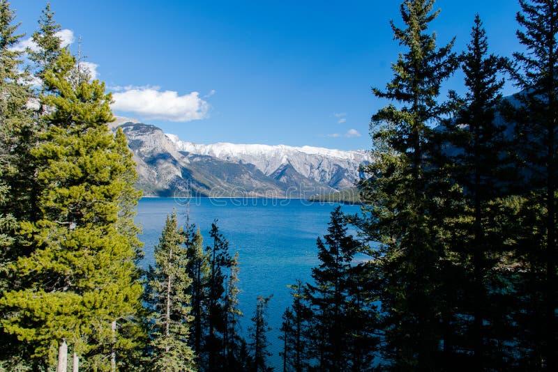 Piękny widok krajobraz w Alberta zdjęcia royalty free