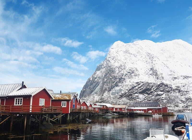 Piękny widok Lofoten wyspy, Norwegia obraz royalty free