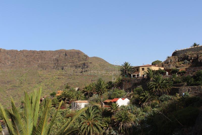 Piękny widok Masca, dolina piraci, Tenerife, Hiszpania zdjęcia royalty free