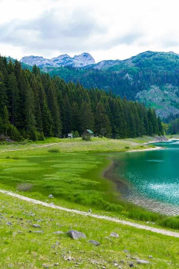 Piękny widok na Czarnym jeziorze Durmitor, Montenegro zdjęcie stock