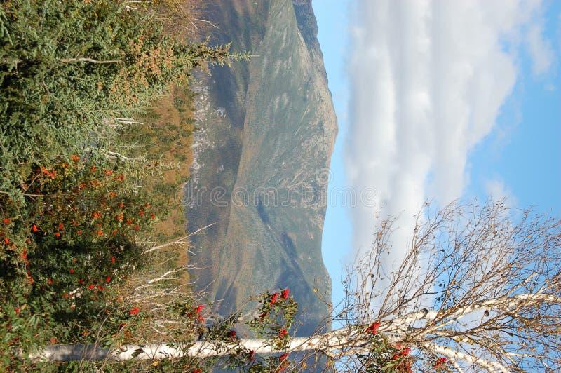 piękny widok na jesieni fotografia stock