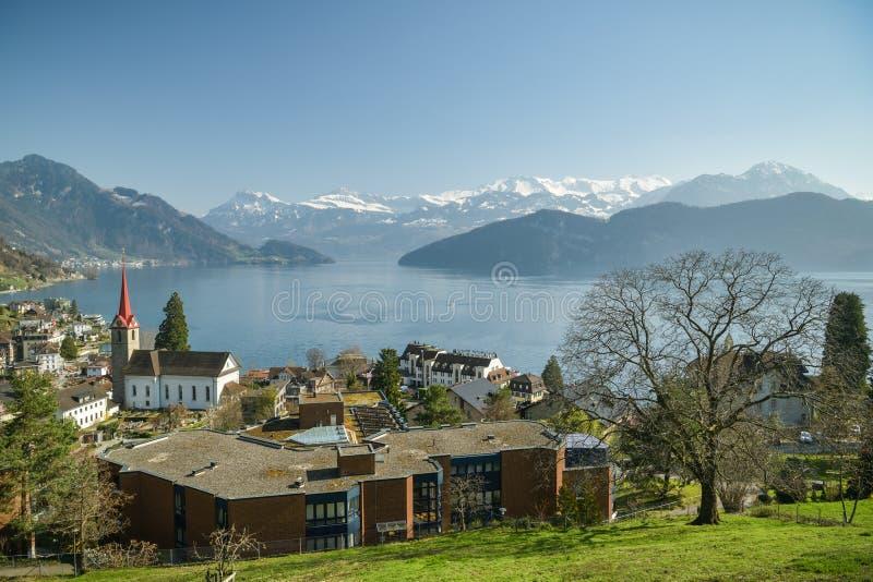 Piękny widok na Jeziornym Luzern i Alps nad Weggis wioska zdjęcie royalty free