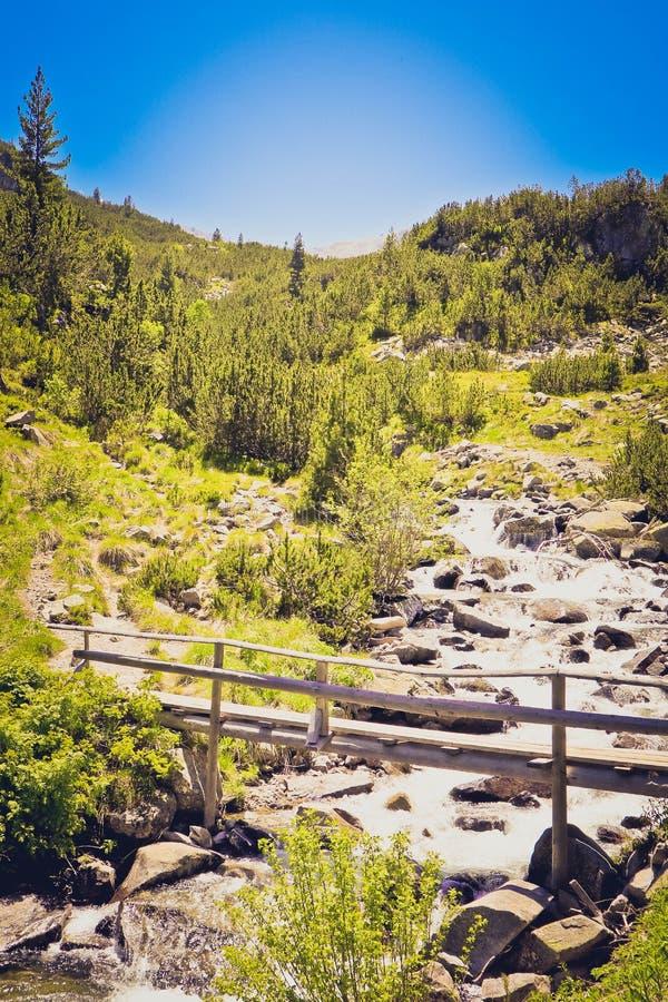 Piękny widok na wysokich zielonych góra szczytach i drewnianym ol zdjęcie stock