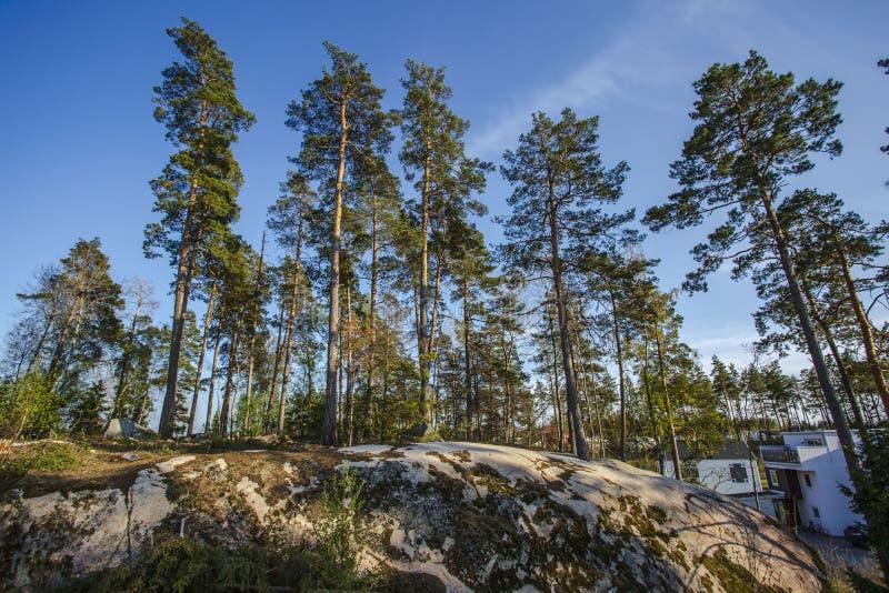 Piękny widok skalisty landskape z zielonymi sosnami i bielu dom na niebieskich nieb tło fotografia royalty free