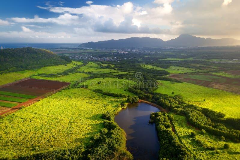 Piękny widok spektakularne dżungle, pole i łąki Kauai wyspa blisko Lihue miasteczka, zdjęcie stock