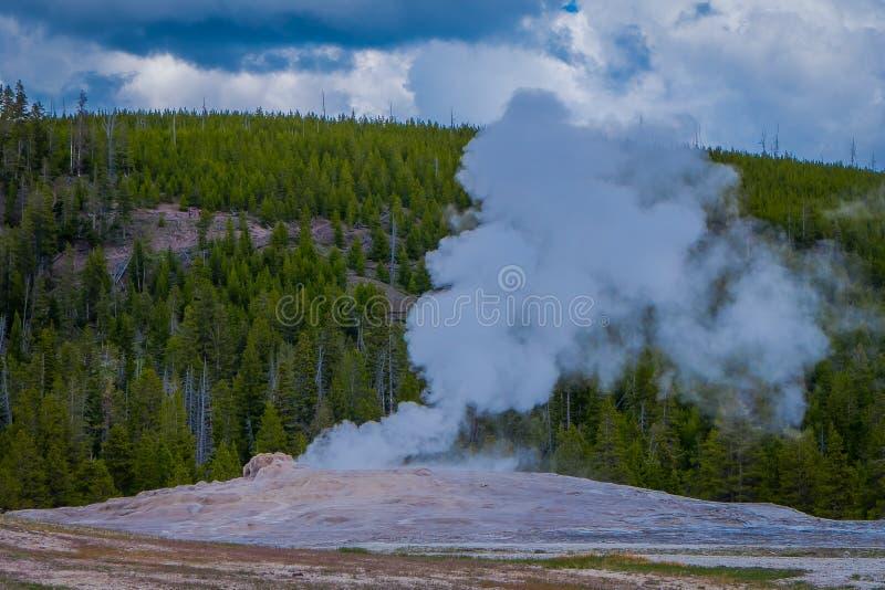 Piękny widok stary wierny gejzeru basen lokalizować w Yellowstone parku narodowym, otaczającym opary z zielenią zdjęcie royalty free