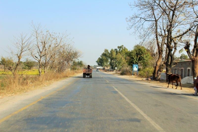 Piękny widok wiejskie drogi i drzewa zdjęcie royalty free