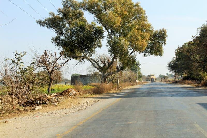 Piękny widok wiejskie drogi i drzewa fotografia stock
