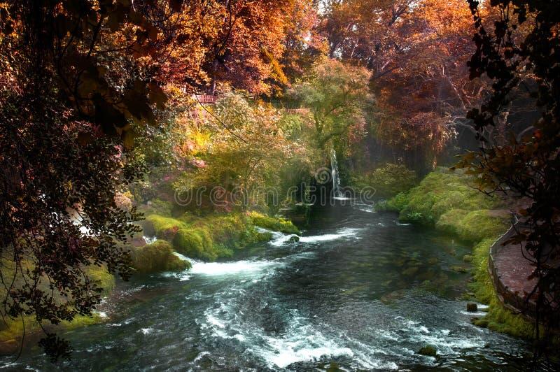 Piękny widok z siklawą w lesie zdjęcie royalty free
