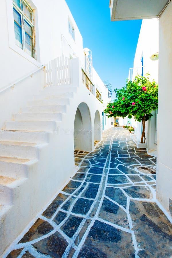 Piękny widok zielony drzewo na środku grecka ulica fotografia stock