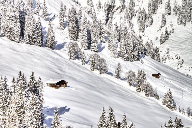 Piękny widok zim Szwajcarscy Alps, Berner Oberland, Adelboden obraz royalty free