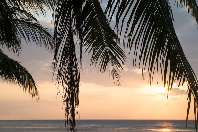 Piękny widok zmierzch na plaży Palma w świetle słonecznym obrazy stock