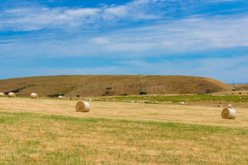 Piękny wieś krajobraz ziemi uprawnej pole z słomianymi belami zdjęcie stock